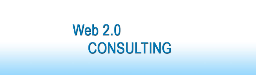 Web 2.0 Consulting Banner